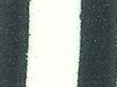 VI01 blanc