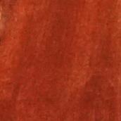 velours de soie écureuil